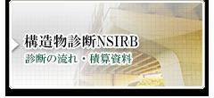 構造物診断NSIRB